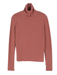 Steam warmer turtleneck top