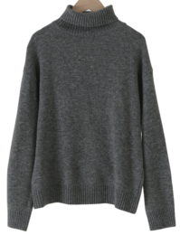 Normal Soft Wool Turtleneck Knitwear