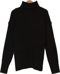 Soft Ribbed Turtleneck Knitwear