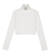 Mage cropped Fleece-lined turtleneck top