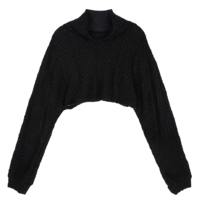 Juicy cropped turtleneck knit