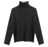 Sweet Ribbed Turtleneck Knitwear