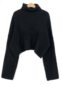 Hachi Crop Turtleneck Knitwear-4color 針織衫