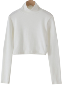 Slow Crop Fleece-lined Turtleneck T-shirt