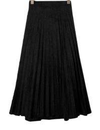 Pleated envy long skirt