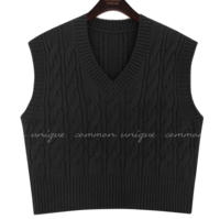 Cable Pattern V-Neck Knit Vest