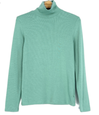 Minty Slim Turtleneck T-shirt-5color