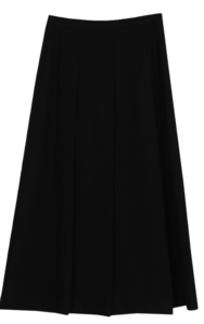 Denri pleats long skirt