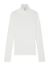 Seasoning slim turtleneck top