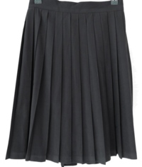 Seed pleated skirt 裙子