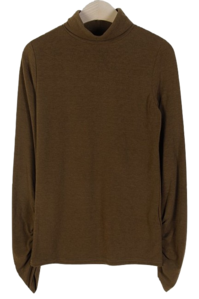 Retail Shirred Turtleneck T