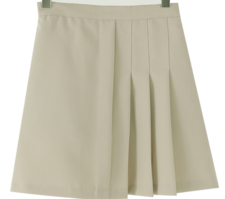 Half pleated mini skirt
