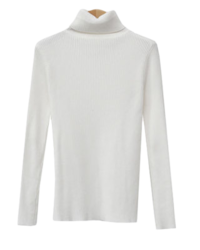 Ribbed Turtleneck for Everyday Wear