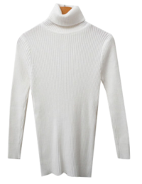 Carat Ribbed Turtleneck Knitwear