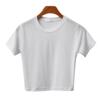 Simple Crop Short Sleeve Tee