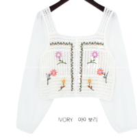 Embroidered Bodice Cropped Blouse