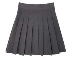 Roy half pleated skirt