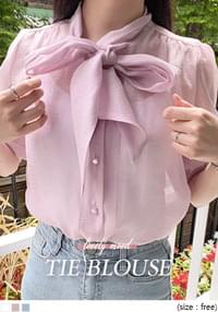 Ribbon Accent Sheer Blouse