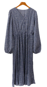 Dayrup pleats Dress
