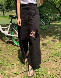 Frese two button damage wide pants vol.383