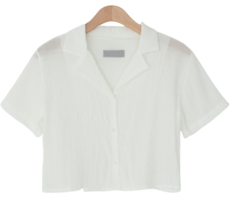 Mayby Wrinkle Crop Blouse