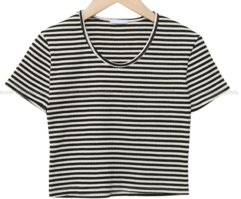 striped Ribbed cropped short sleeve tee