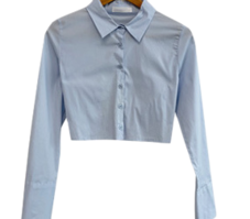 Collectible, slim correction fit cropped shirt