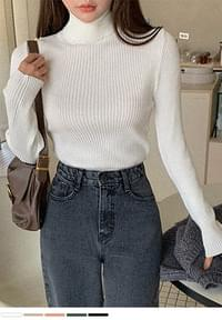Appearance of all-purpose item Ribbed Turtleneck Knitwear