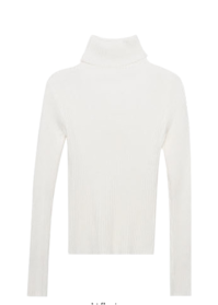 Oatmeal-Colored Turtleneck Knit Top